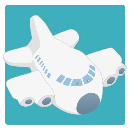 Plane 300